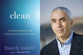 David Sheff, Clean: Overcoming Addition and Ending America's Greatest Tragedy